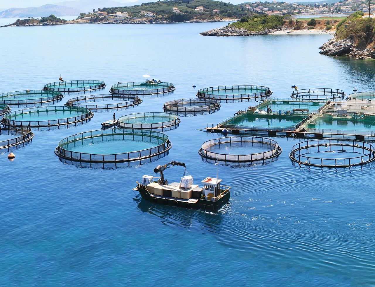 w_studer_referenzen-fischfarmen